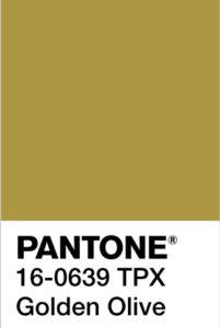 foto di Golden Olive Pantone 16-0639 tpx