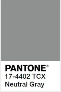 foto di Neutral Grey Pantone 17-4402 tcx
