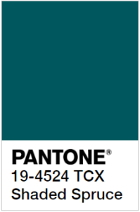 foto di Shaded Spruce Pantone 19-4524 tcx
