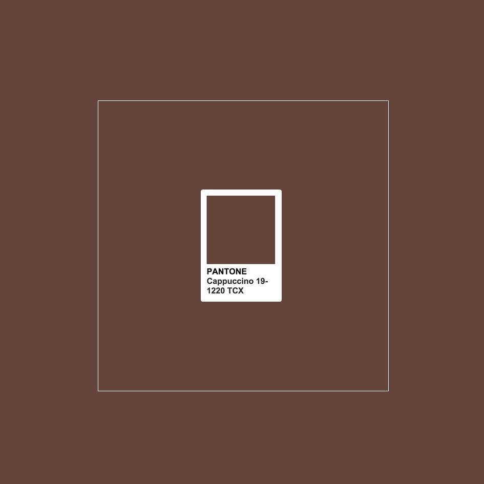 Pantone 2019 svelate le prime palette colore foto cappuccino pantone 19 1220 tcx malvernweather Choice Image