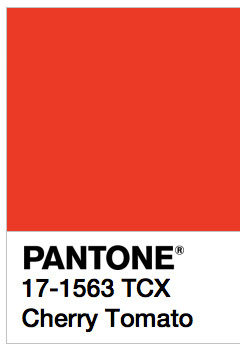 Triumph In London >> 2018 Color trends: Pantone's winter and spring selections - Tosilab