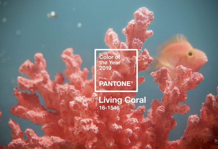 Living Coral is the color of the year 2019