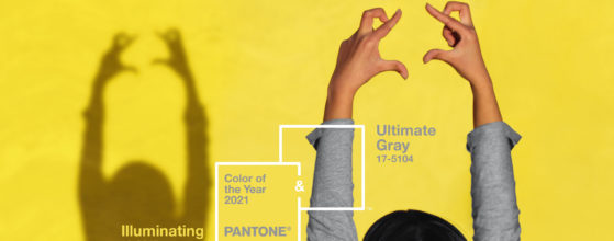 foto Pantone 2021 Illuminating + Ultimate Gray Colore dell'anno Tosilab 4